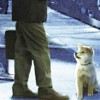 Goodbye – Theme Of Hachi: A Dog's Tale for Band